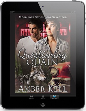 Questioning Quain by Amber Kell