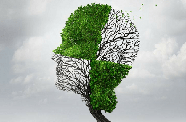 Is CBD Good for Mental Health?