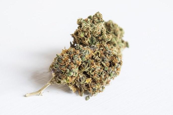 MMJRecs - marijuana bud