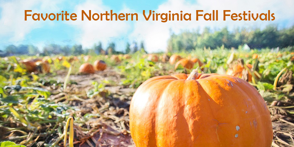 Favorite Northern Virginia Fall Festivals MMK Realty Northern Virginia