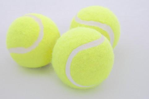 【テニス】ジョコビッチが錦織を警戒「過去12か月間、圭は最高のテニスをしている」