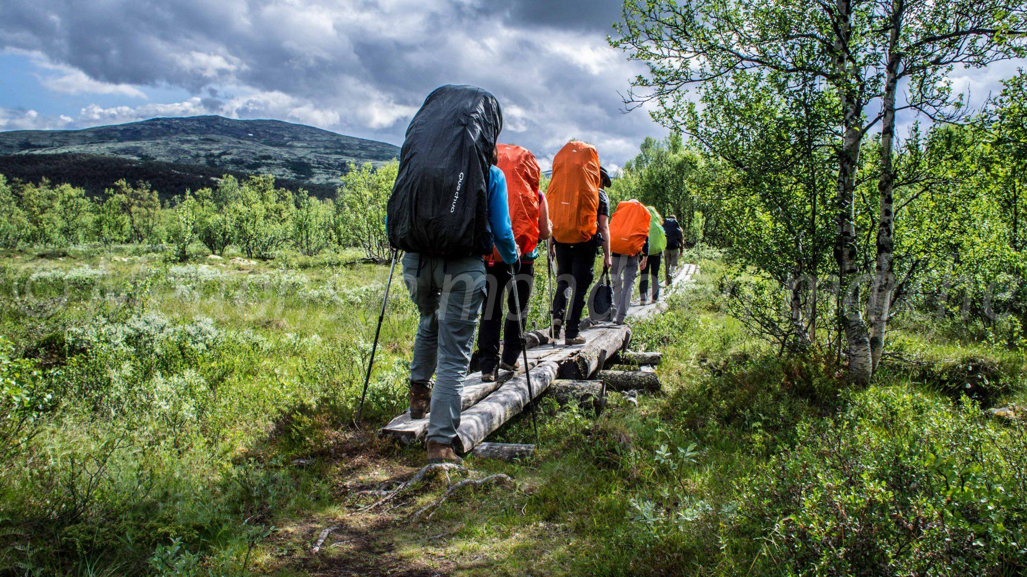 Rondane (Norvège)