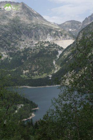 Pyrénées Réserve de Néouvielle - 2017