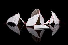 Fragmented Impressions. 2013. Rachel Cramer.