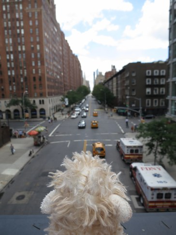 Lamby @ the High Line