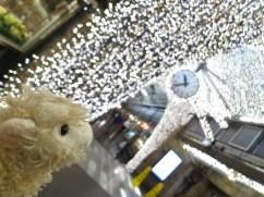 bright lights, big city, small lamb @ Chelsea Market