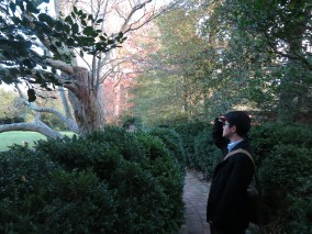 a markling and a ladison, on an adventure in a DC garden