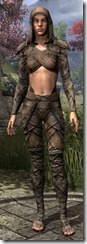 Bosmer Homespun Jerkin - Female 1 Normal Front