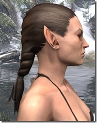 Heroic Hind Braid 2