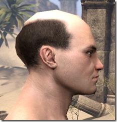 Balding But Distinguished 2
