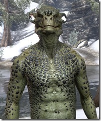 Cheerful Argonian