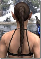 Long Hind Braid 3