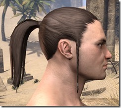 Ponytail with Braidlocks 2