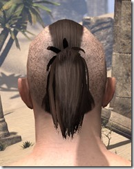 Shaved Warrior Ponytail 3