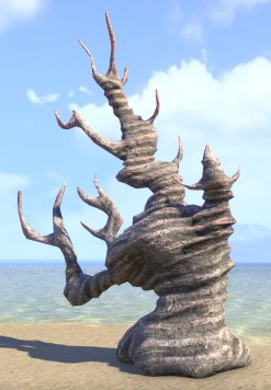 Coral Formation, Tree Antler