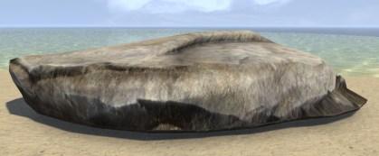 Limestone Shelf, Curved