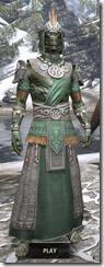Elder Argonian Homespun - Argonian Male Robe Front