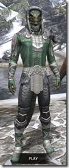 Silver Dawn Homespun - Argonian Male Shirt Front