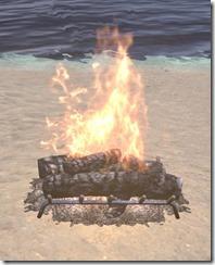 Winter Festival Hearthfire 1