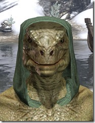 Imperial Hat 1 - Argonian Male Front