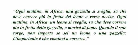 gazzella leone