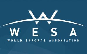WESA Prohibits Multi-Team Ownership