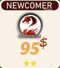 gw2 package service