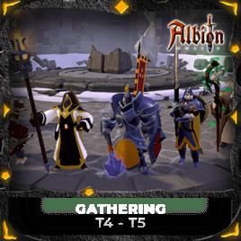 Gathering T4-T5