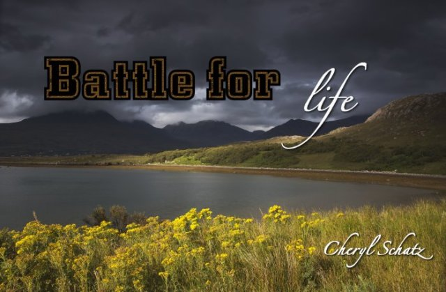 Cancer battle On the Path blog by Cheryl Schatz