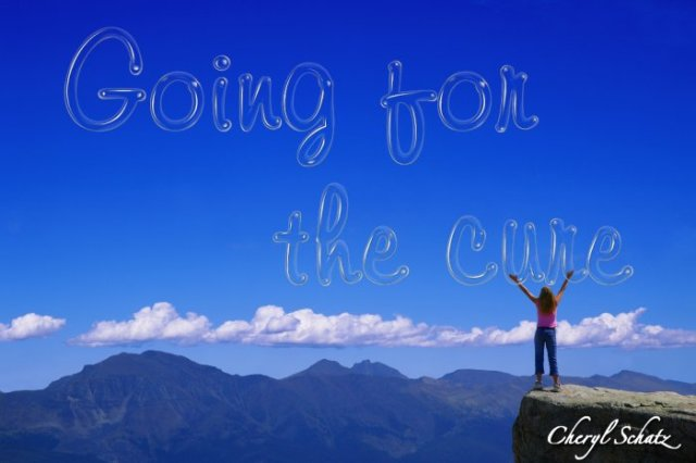 Going for the cure On the Path blog by Cheryl Schatz