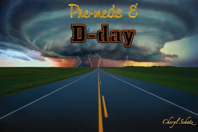 D-day -- On the Path blog by Cheryl Schatz