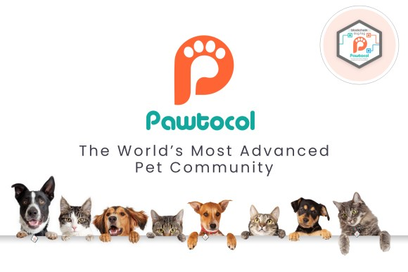 Pet Technology Unleashed! Pawtocol Launches its First IEO ...