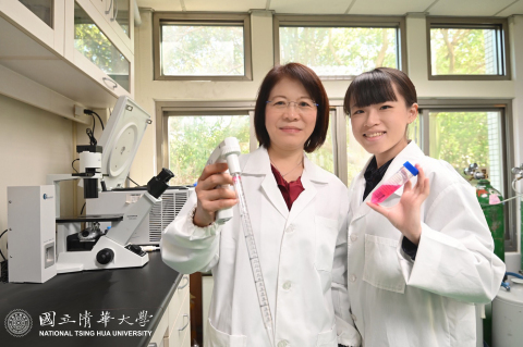 Professor Wang Wen-ching (left) of the Institute of Molecular and Cellular Biology and Dr. Tseng Linlu researching a new treatment for gastric cancer. (Photo: National Tsing Hua University)