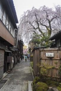 Kanazawa-DSC_6878-b-kl