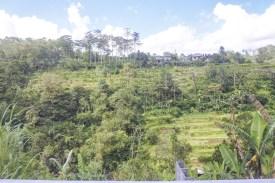 Nach-Padangbai-DSC_7771-b-kl