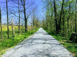 Ky Country Road
