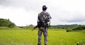 insurgent ceasefire