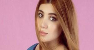Iraqi model