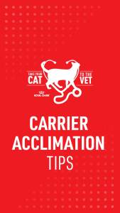 1_Cat2Vet-2021-CarrierAcclimationTips-Social (3)