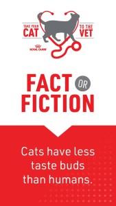 1_Cat2Vet-2021-FactorFiction-TasteBuds-Social