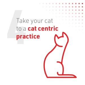 5_Cat2Vet-2021-5TipstoReduceStress-Social