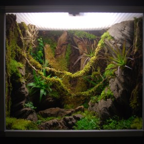 Terrarium plug and play 60x45x60