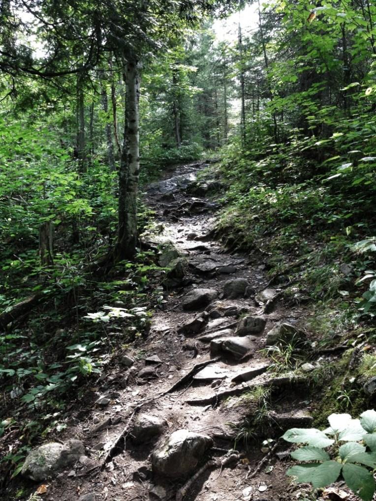 Echo Trail