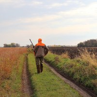 7th Annual Minnesota Governor's Pheasant Hunting Opener