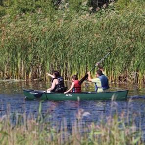 Big Bog State Recreational Area