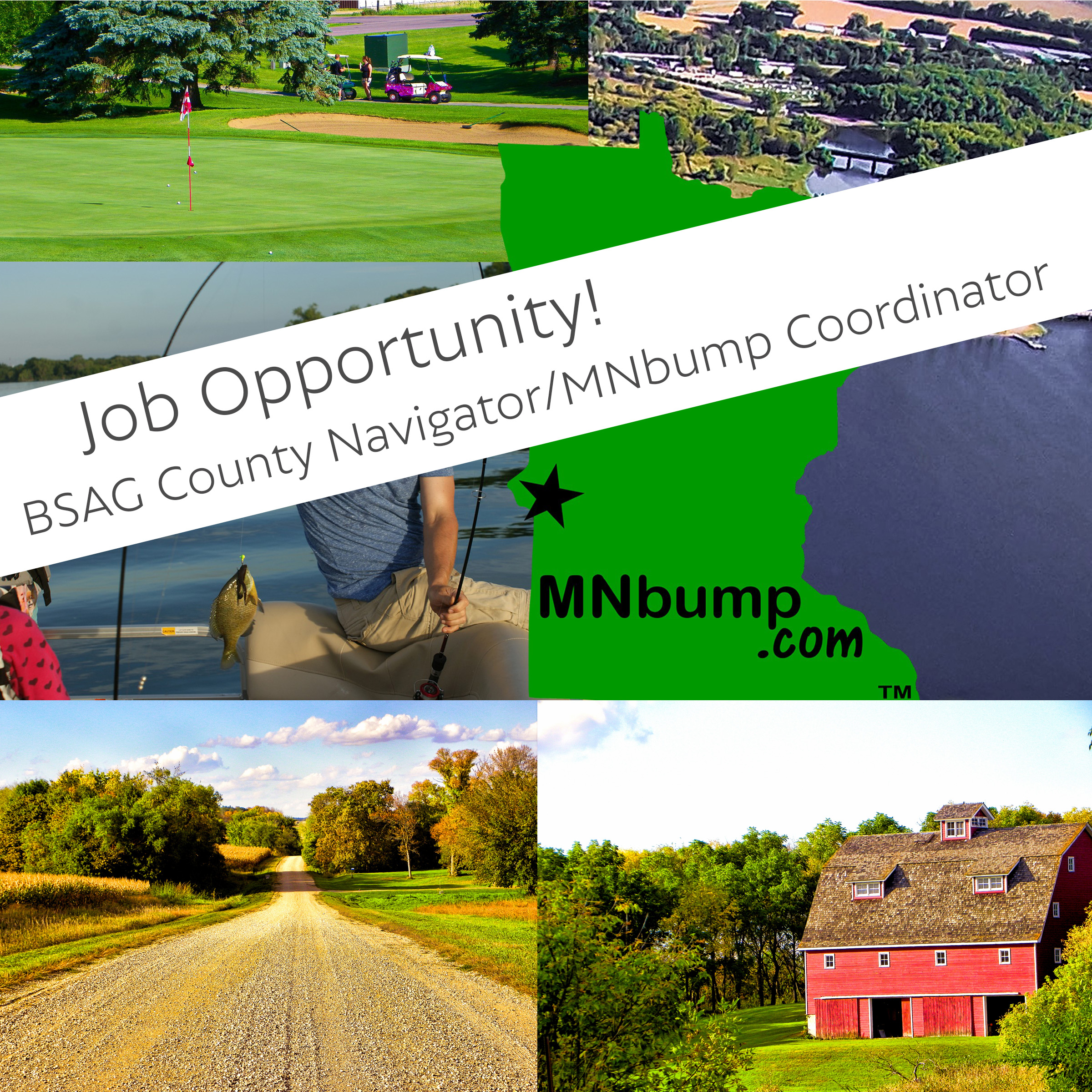 MNbump RFP (Position Opening)