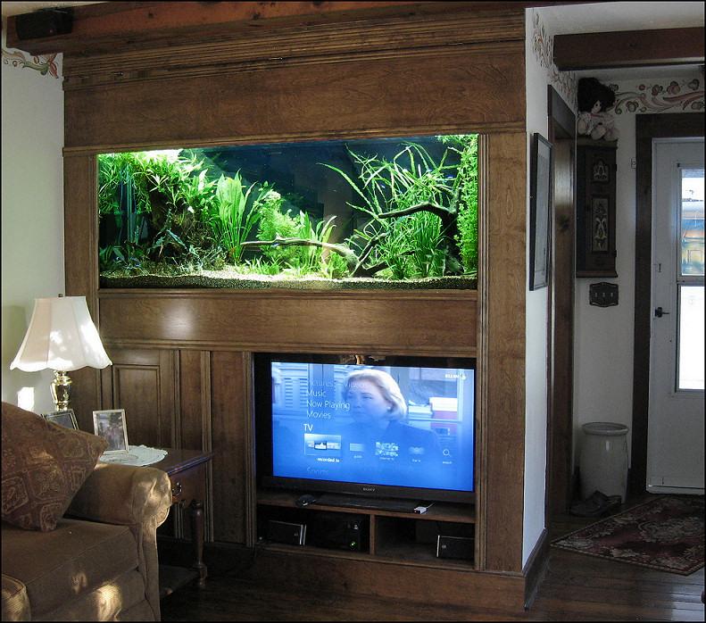 150 Gallon Planted Aquarium