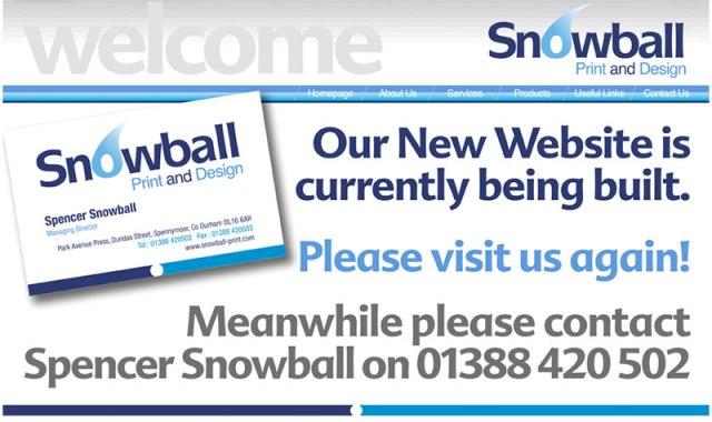 Snowball Print