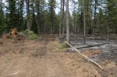 Palsburg Fire dozer line. Credit: Steve Mortensen, Julie Palkki