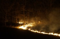 green-valley-valley-fire-2013-river-of-fire